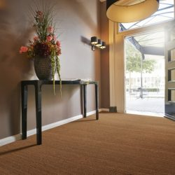 Natural Coir Matting 505